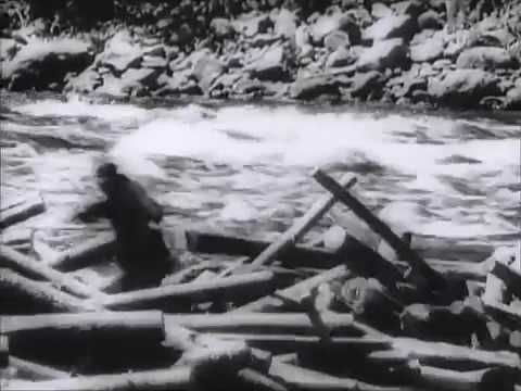 Canadian Newsreel — Canada's Logging Industry Rushes Timber for War
