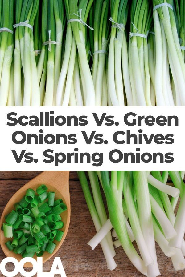 Scallions Vs Green Onions Vs Chives Vs Spring Onions What S The Difference Types Of Onions Green Onions Recipes Green Onions