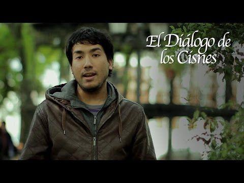 El Diálogo de los Cisnes / Crowdfunding FONDEADORA