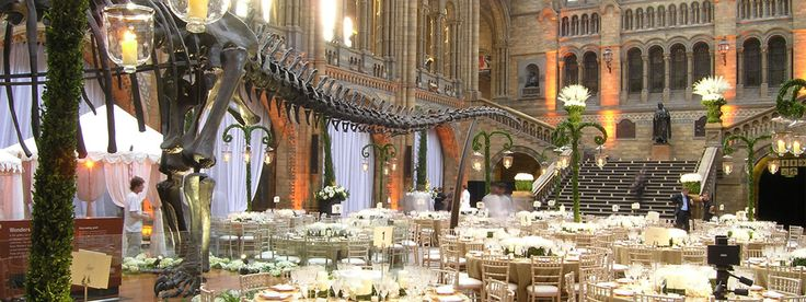 Why not hire the Natural History Museum for your Wedding?