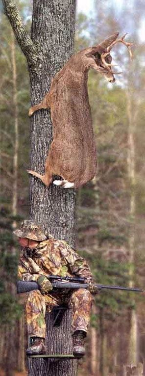 This is what usually happens on the first day of hunting season. How do they just seem to know??? LOL