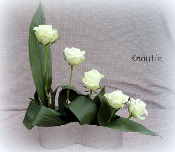 Blog de knautiedeschamps - Page 4 - Blog de Knautie des champs - Skyrock.com