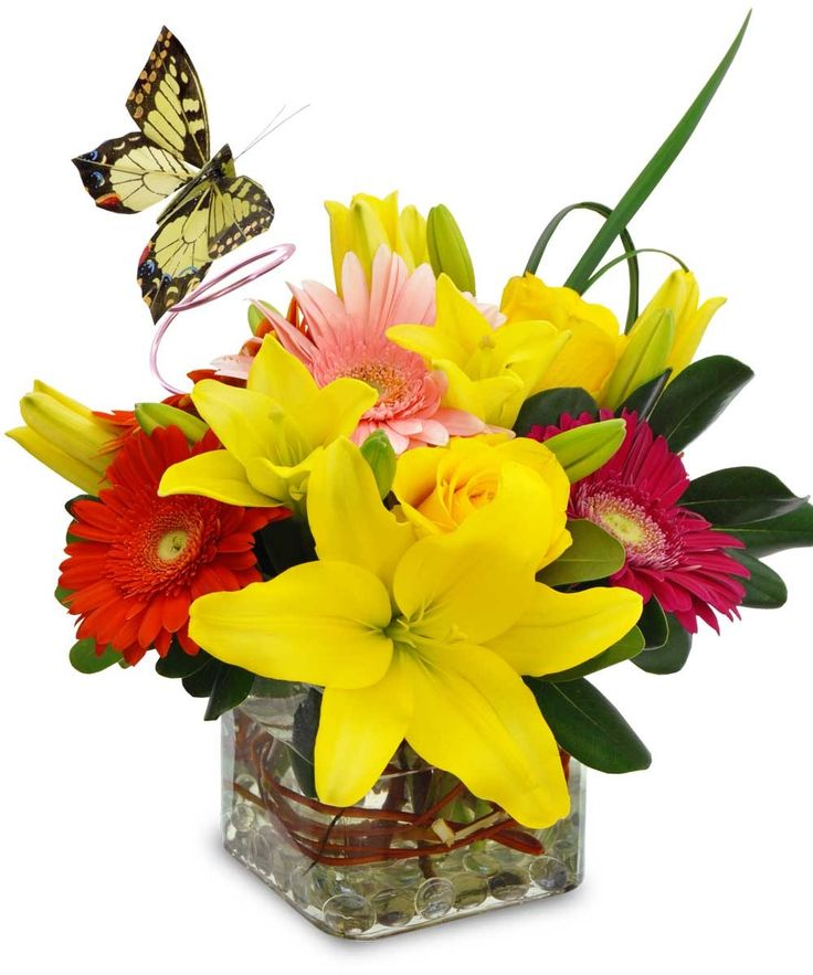 Bright and cheery flowers same day delivery - 17 Best Images About Father S Day Gifts And Flower
