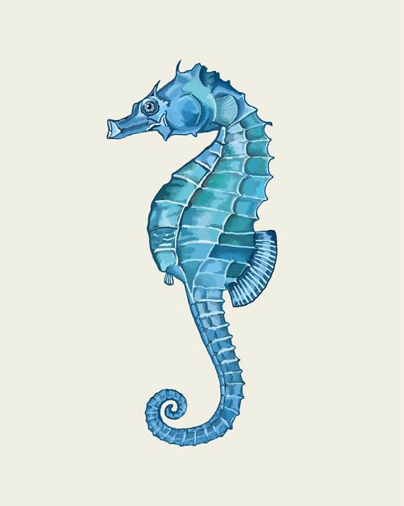 Blue Seahorse print, Art Print Nautical print sea beach house decor wall decor bathroom decor nautical picture Nautical decor beach decor