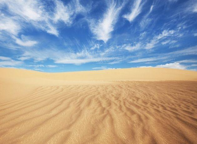 ゴビ砂漠1