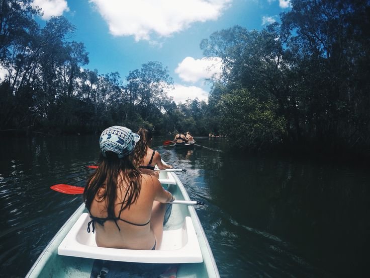 Noosa Everglades, Australia.