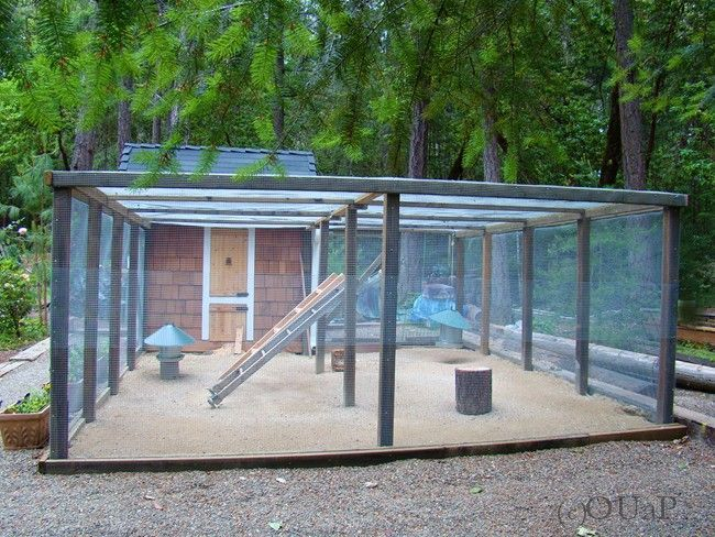 coop for guinea hens | This hen house has a super large run- get more free Dunnage?! Or use ...