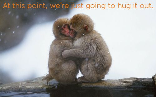 Sometimes, you really just need a hug! #JuniorExplorers #Meme #Hug #Love #SnowMonkeys