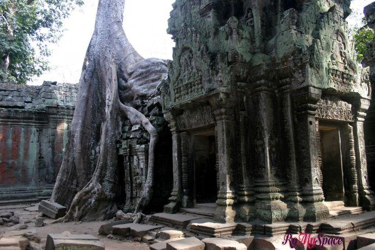Ta Prohm, il tempio inghiottito dalla foresta | www.romyspace.it