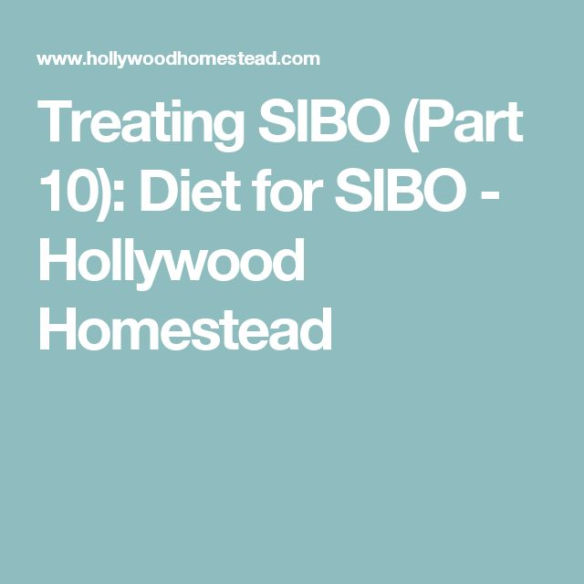 Treating SIBO (Part 10): Diet for SIBO - Hollywood Homestead
