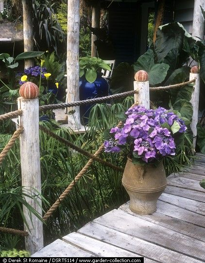 : Wooden bridge over a stream with rope fencing capped with seashells