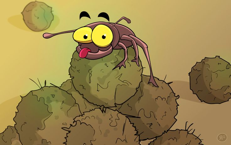 Dung beetle proudly sits on his dung pile | 2D illustration by Rowan Ferguson