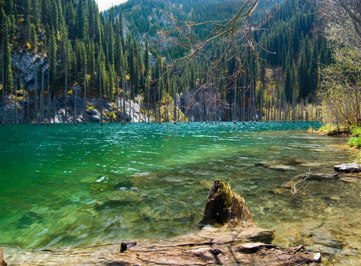 El bosque bajo el agua del lago Kaindy, en las montañas de Tian Shan (Kazajistán), se formó después de que un terremoto provocase un desprendimiento de tierras que dio paso a este extravagante lugar, con árboles cubiertos por agua con una profundidad de hasta treinta metros. El submarinismo aquí es solo para los más atrevidos.