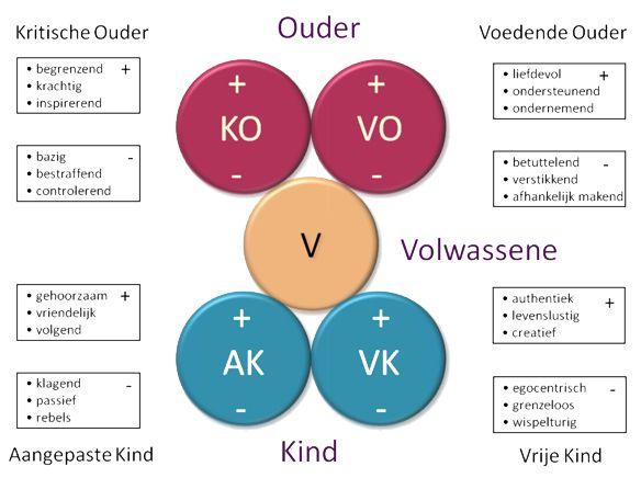O-V-K model Het O-V-K model verheldert de interne emotionele toestand waar een individu zich op een bepaald moment in bevindt. Er zijn drie basistoestanden: de Ouder, de Volwassene en het Kind. De toestanden zijn slechts etiketten en hebben geen betrekking op werkelijke kinderen, ouders of volwassenen.