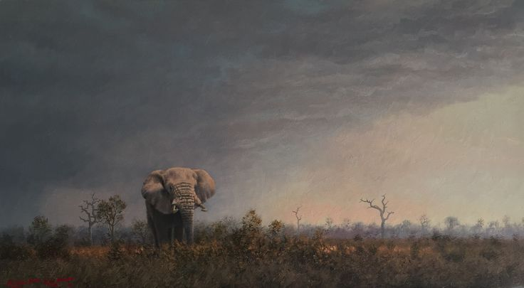 Lone bull Oil on canvas  by Robert Koch