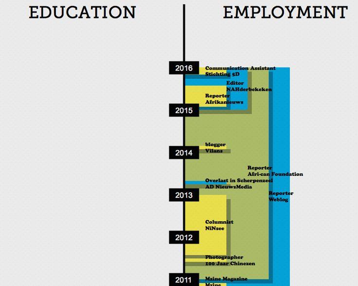 Mijn CV op Visualize.me