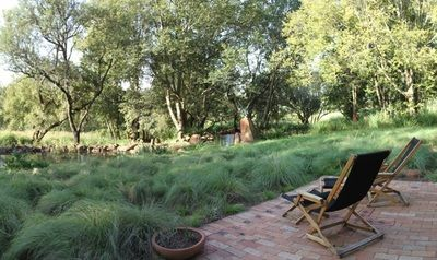 Natural Gardens | Emmarie Otto | Garden Elandsdrift. This is an already established garden, situated in the bufferzone of theCradleof Humankind in Gauteng, South Africa. The front garden of the house has been regenerated from a kikuyu lawn, to an indigenous wild grassland.