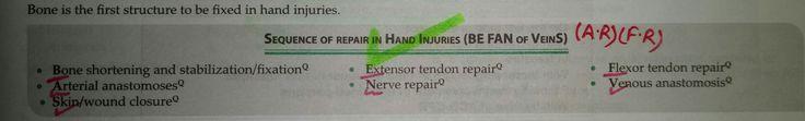 Order of repair in hand injuries... imp... (*) BE FAN of VeinS...