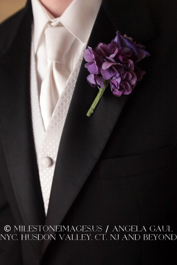purple hydrangea boutonniere for the groomsmen. Could even make these with silk flowers.