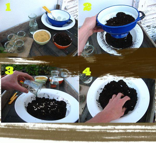 Seedbombs Ganz Einfach Selber Rollen.