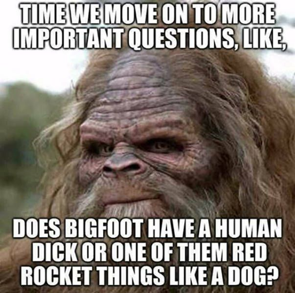 Knot Your Brow And Bow Your Head Meme Dump With Images Bigfoot