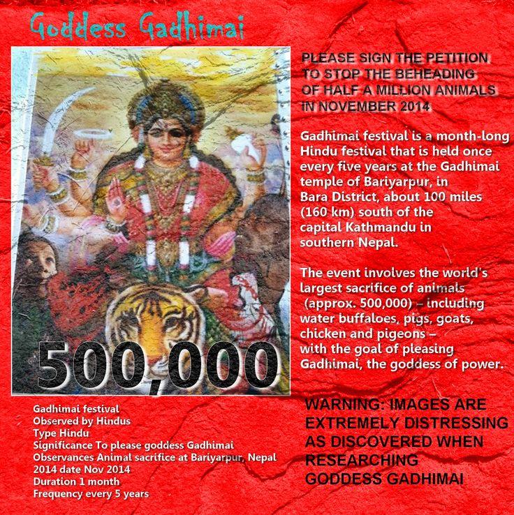 PLEASE SIGN THE PETITION http://www.change.org/p/stop-animal-sacrifice-gadhimai-festival-nepal-mass-animal-sacrifice