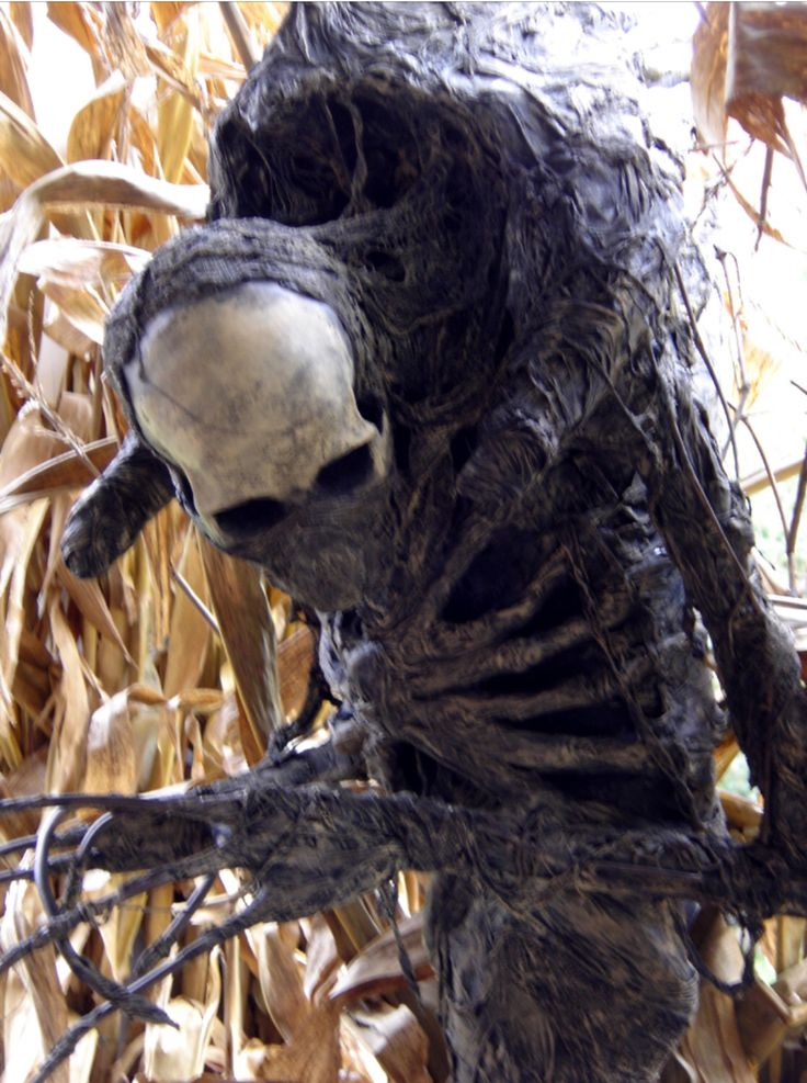 310 best scarecrows images on pinterest halloween stuff