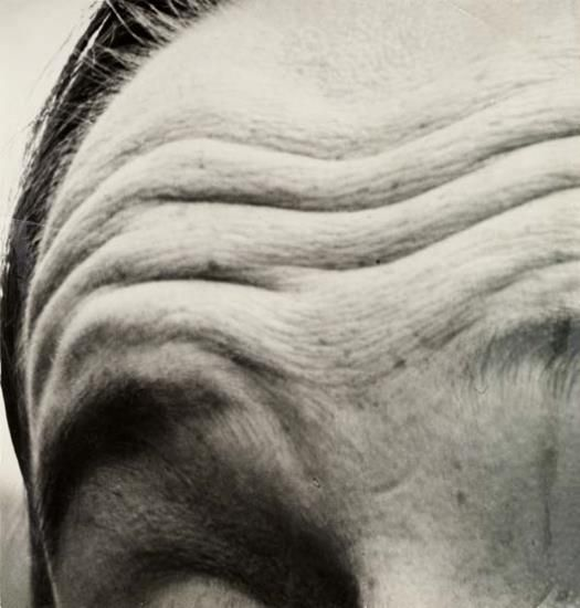 EDMUND PAUL HAHN The Face as Landscape: The Waves of the Forehead , circa 1928:
