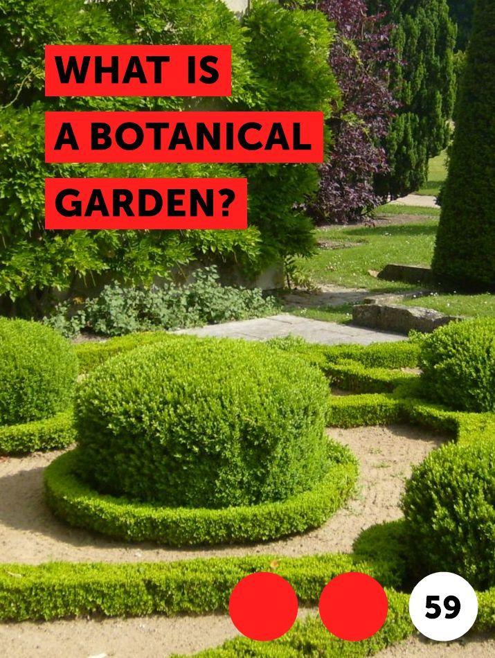 4f5b7f82b83d7f187cab7477f8216a43 - What's Happening At The Botanical Gardens