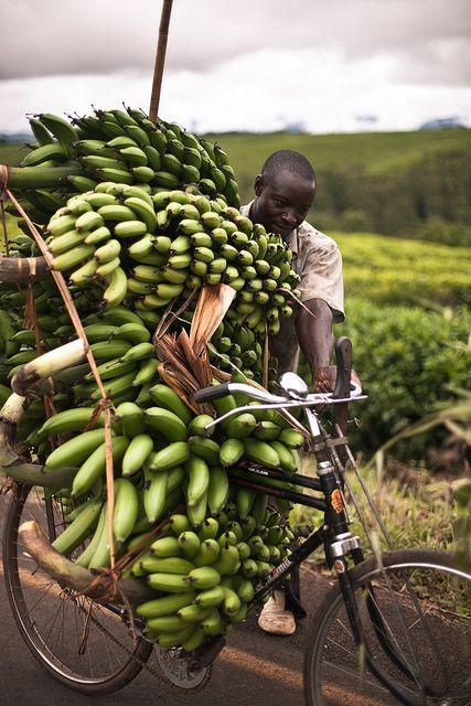 green bananas in tanzania