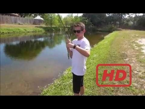 Fishing & Pond -  Fly Fishing for Bass and Bluegill in Florida - Catching a Fish Every Cast - (More info on: https://1-W-W.COM/fishing/fishing-pond-fly-fishing-for-bass-and-bluegill-in-florida-catching-a-fish-every-cast/)