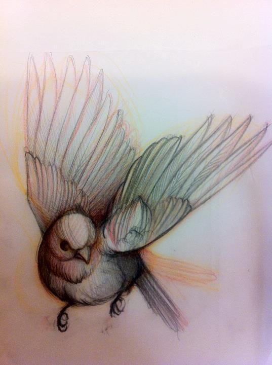 Bird Tattoo Sketch. Very pretty. Almost water color                                                                                                                                                      More