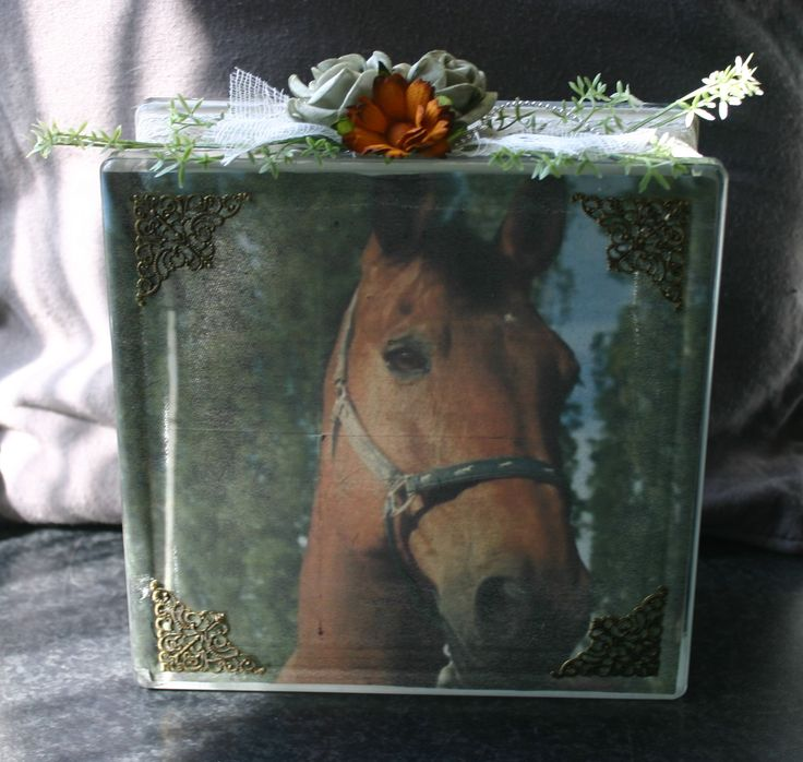 lovely  horse made for a costumer