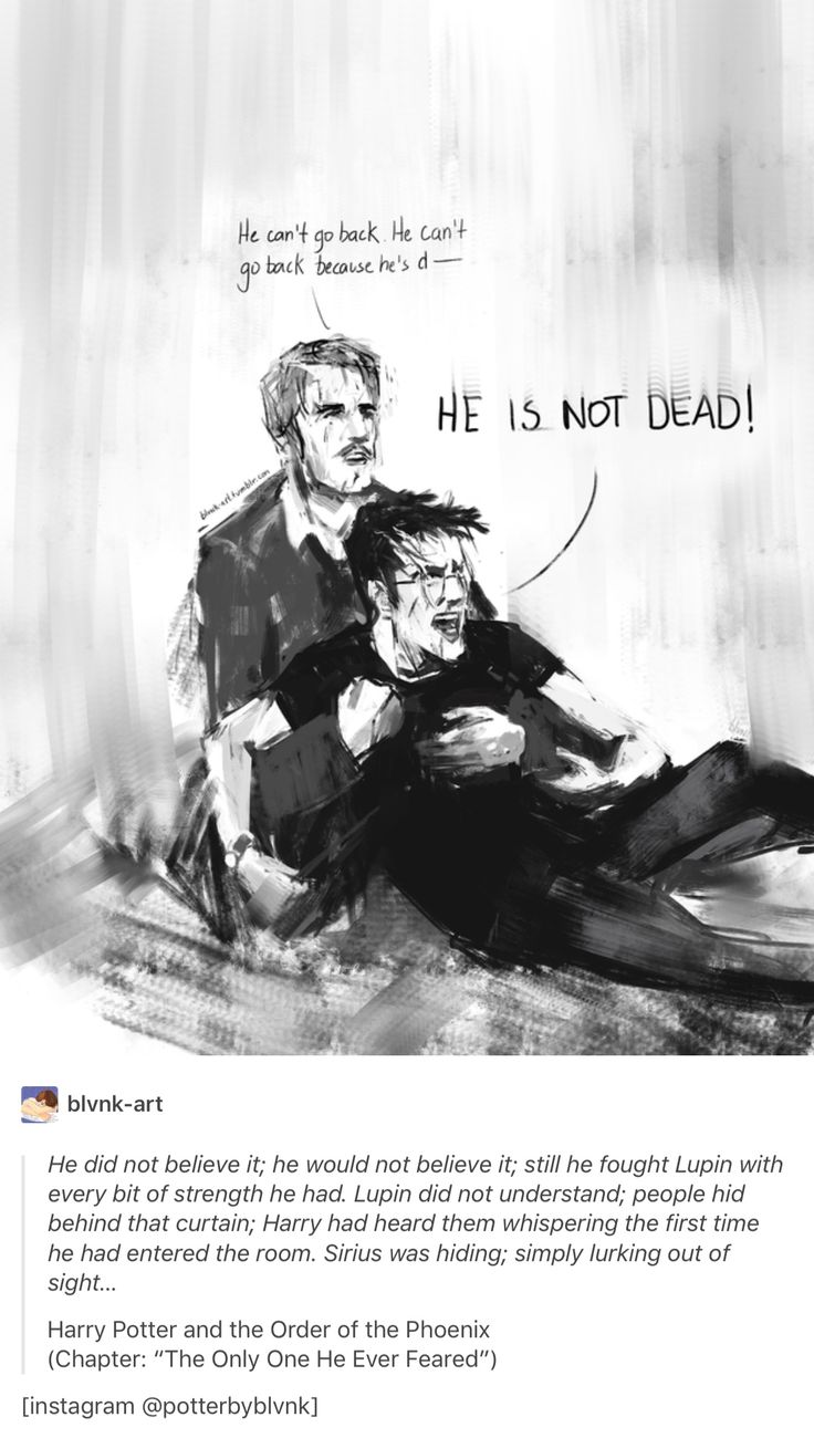 If I got it right, only those who saw death could hear the voices. Imagine how much effort Remus had to put in not running there quicker than Harry. He probably made it just because he remembered what he told Harry two years ago. That his parents gave life for him so he shouldn't waste it. His best friends gave life for Harry's life and thinking about it was probably the only thing making him not run to the veil as quick as possible for human being.