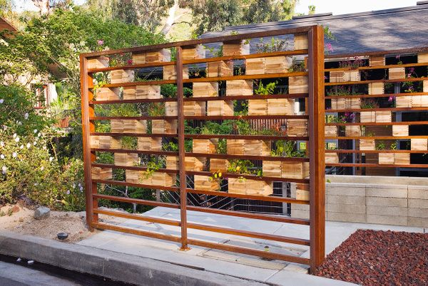 privacy herb garden