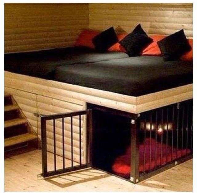Ins Dog Crates For Sale