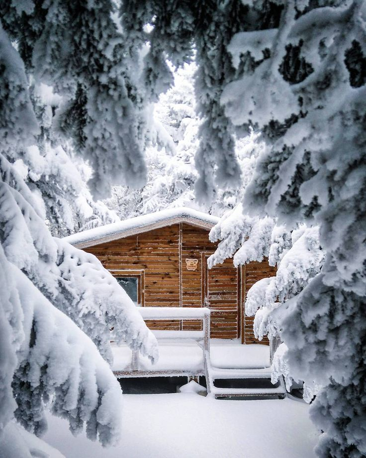 Winter Cabin #Uludağ (Ulu Mountain) #Bursa #Turkey - Photo by moondin