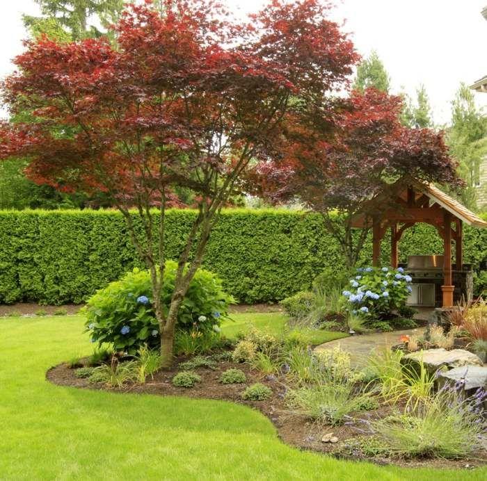 Popular Eine Hecke verleiht dem Garten eine nat rliche Atmosph re