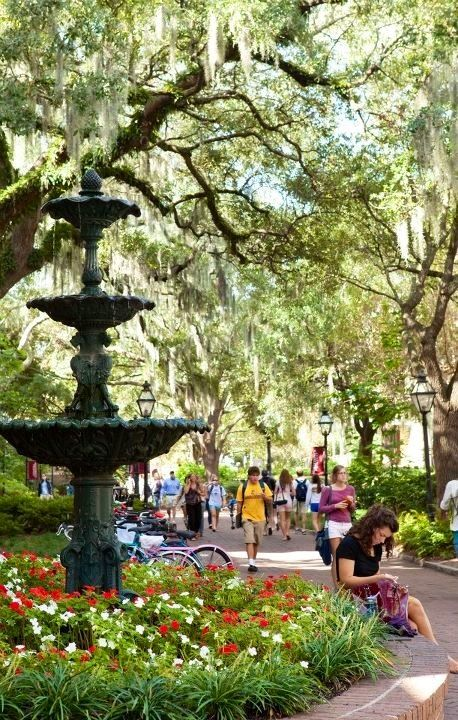 The College of Charleston University, located in the heart of Charleston, SC, is one of the most amazing campuses in the South! Beautiful and historic enjoy shopping King Street and the Charleston City Market in between classes and library visits.