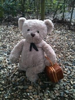 Sweet little Misery Bear.