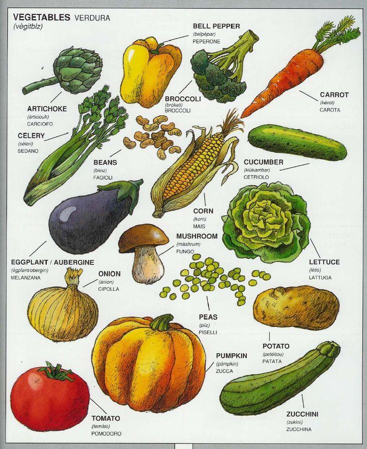 #1351 Parole Inglesi Per Piccoli e Grandi - #Illustrated #dictionary - #vegetables
