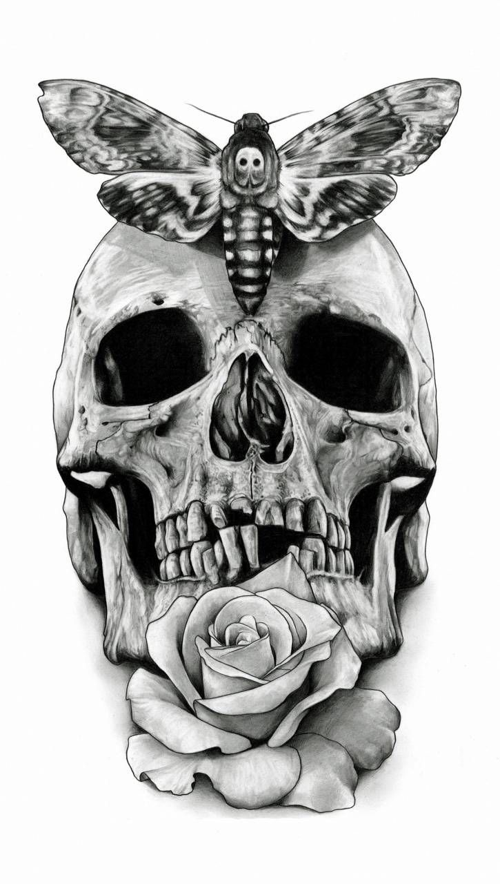 Download Skull Wallpaper By Konig 4d Free On Zedge Now Browse Millions Of Popular Dfg Wallpapers And Ringt In 2020 Skull Sketch Skulls Drawing Skull Painting