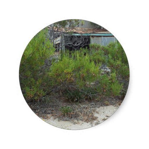 old tin shack