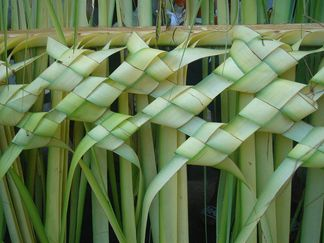 palm frond art how to do it | Palm Leaf Weaving