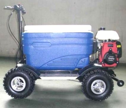 49cc Four Stroke Gas Powered Scooter Cooler