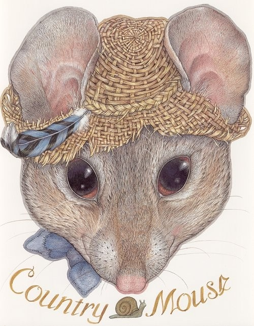 Jan Brett I am that country mouse!
