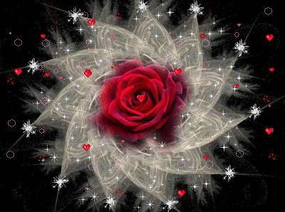 Flower*Power_FLoWeR PoWeR Is LoVE~