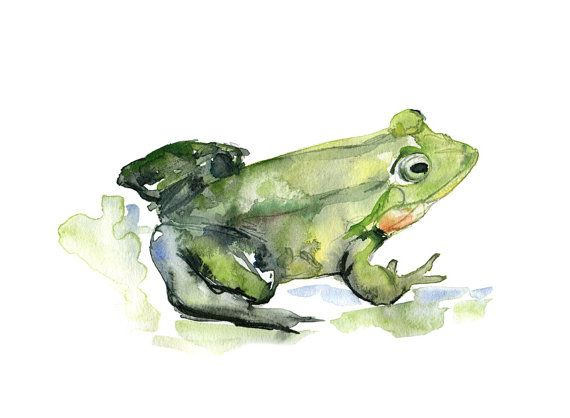 Original watercolor painting of a frog. Green animal by Zendrawing, €25.00