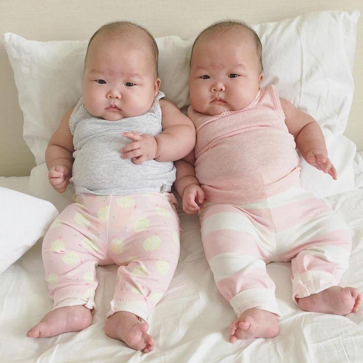 Chubby twin bears