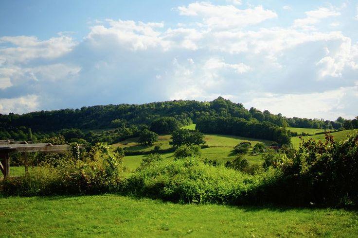 Directe omgeving (zomer) (<1 km)